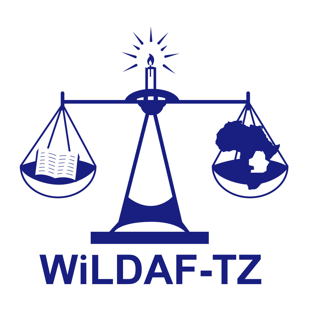 WiLDAF Tanzania – Envisions The Society That Observe Women's Human ...