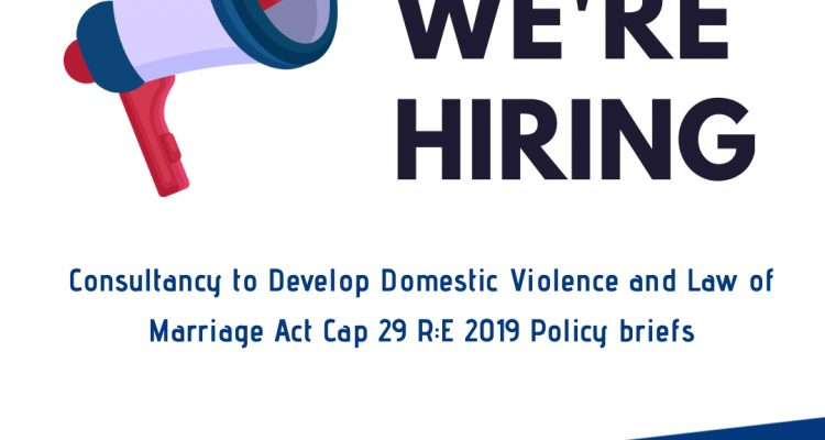 Consultancy On The Development Of Domestic Violence And Law Of Marriage Act Cap 29 R: E 2019 Policy Briefs
