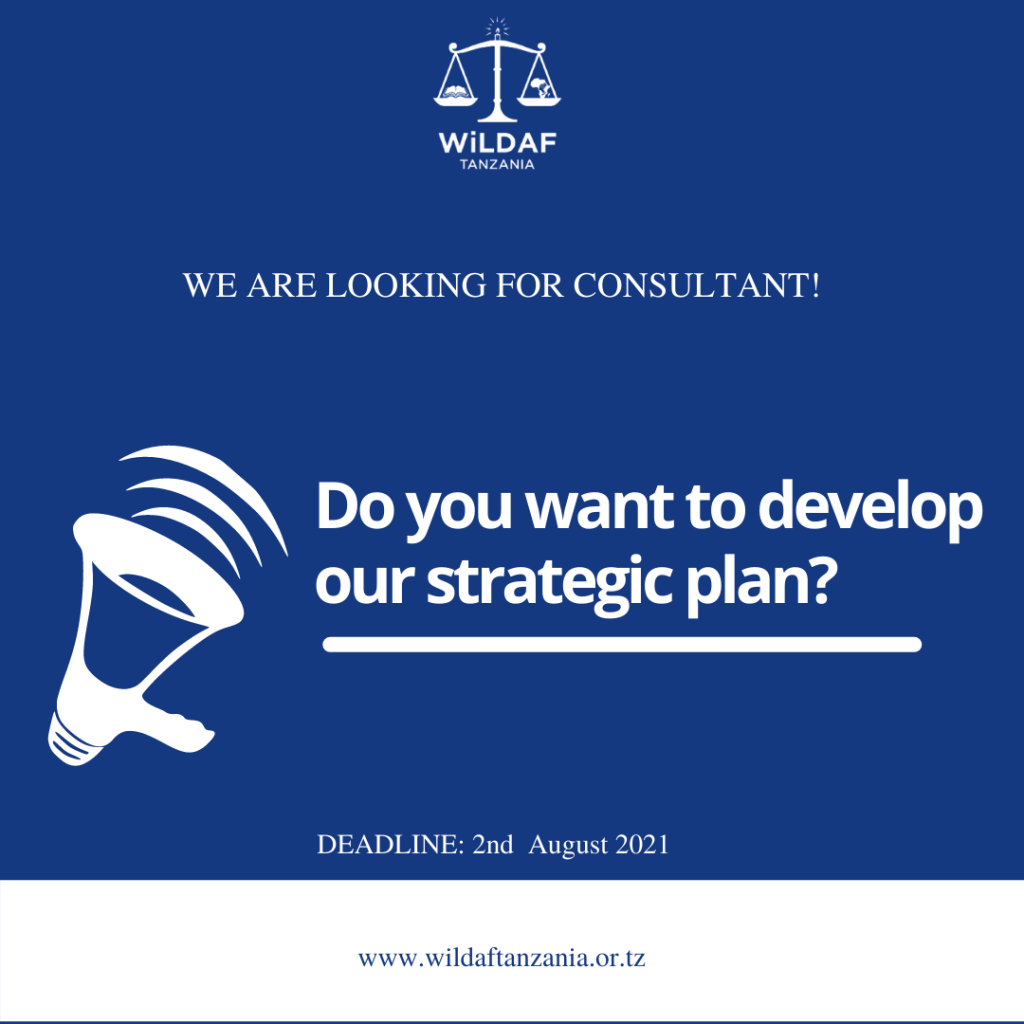 Terms of Reference (ToR) for consultancy on the Development of WiLDAF Strategic Plan 2022-2026
